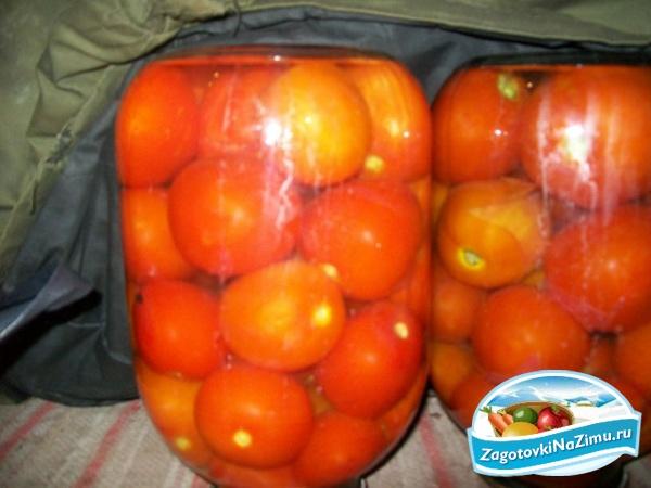Салат из помидоров пальчики оближешь рецепт с 133