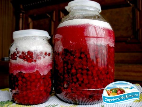 Способ приготовления: свежесобранные ягоды калины, перебрать помыть и опрокинув на дуршлаг дать полностью стечь.