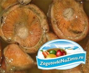 маринованные огурцы рецепт хрустящие | маринад для огурцов ...