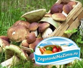 Заготовки из грибов опят на зиму рецепты