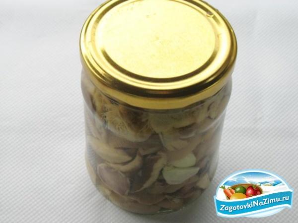 Маринованные грибы со сметаной