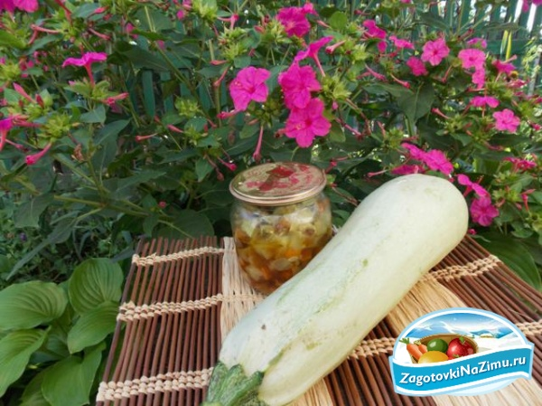 Салаты из свежих кабачков с фото и пошагово