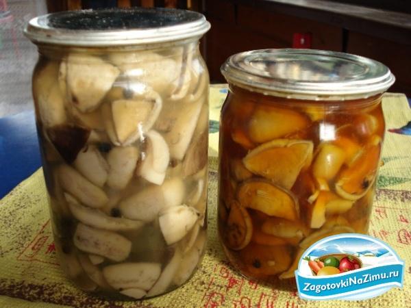 Маринованные грибы на зиму рецепты
