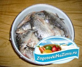 Рецепты домашней засолки рыбы