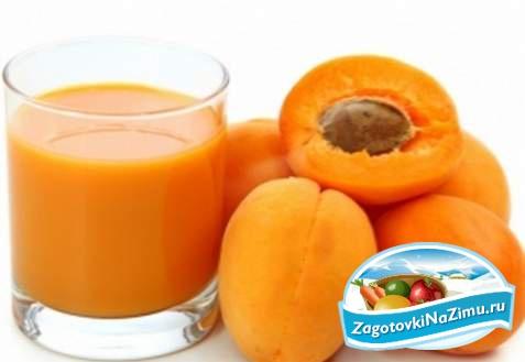 Заготовить яблочный сок в домашних условиях 782
