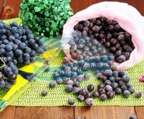 Как сделать заморозку фруктов на зиму