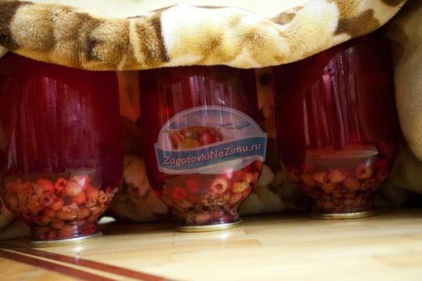 компот из малины на зиму без стерилизации