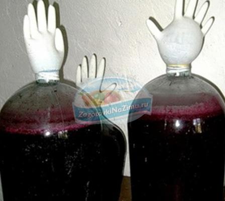 Вино из черемухиы