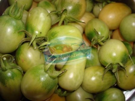 рецепты салат на зелени помидор