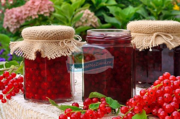 Красная смородина: рецепты варенья на любой вкус