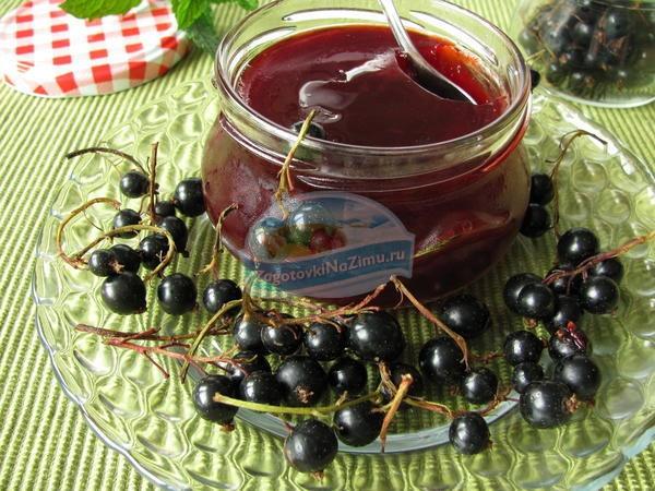 Сок из смородины на зиму: лучшие рецепты с фото
