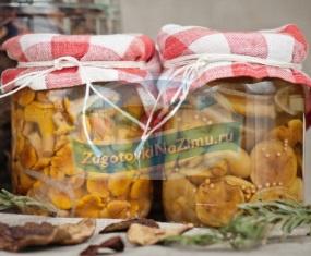 Рецепты грибов на зиму в банках: ТОП -10 с фото