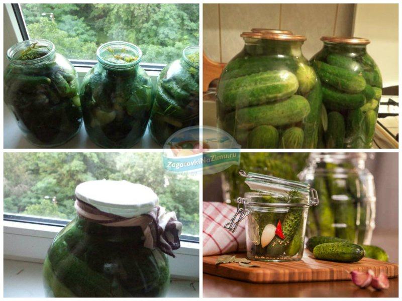 Огурцы соленые холодным способом на зиму: рецепты пошагово с фото
