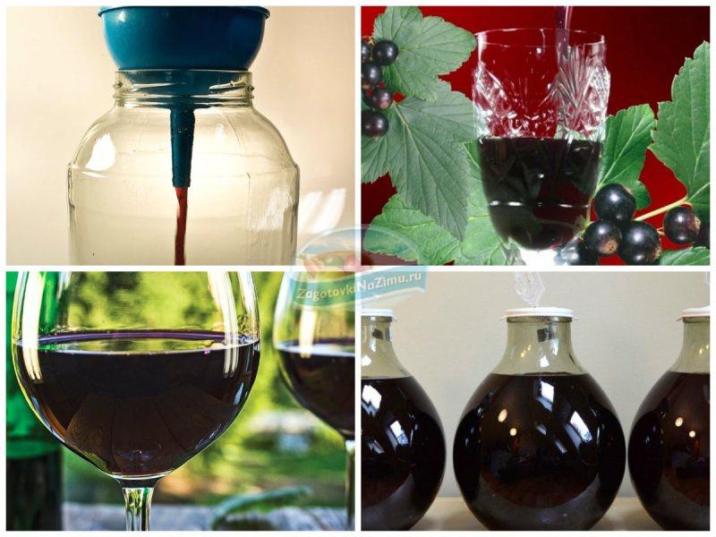 Вино из ягод черной смородины в домашних условиях 476