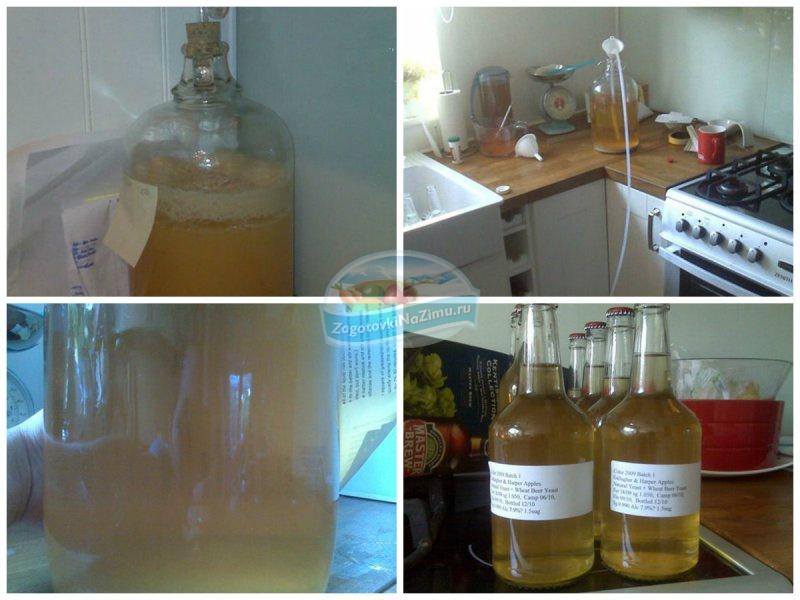 Рецепты домашнего вина из яблок в домашних  119