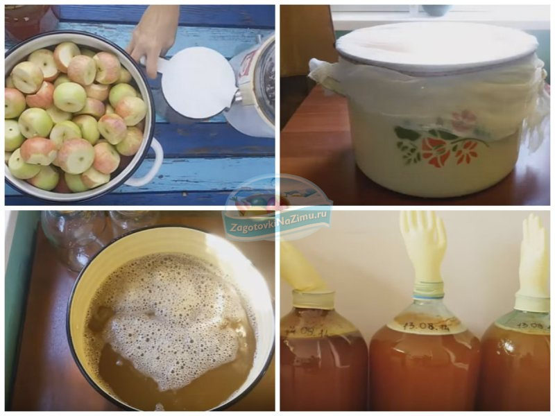 Рецепты домашнего вина из яблок в домашних  446