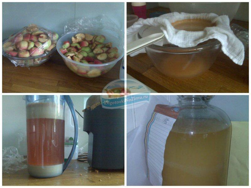 Рецепты домашнего вина из яблок в домашних  462
